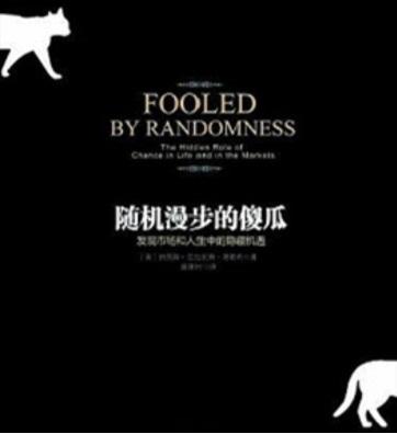 《随机漫步的傻瓜》PDF全本电子书下载